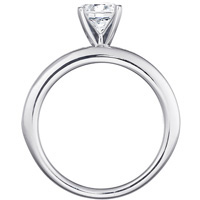 Sage Channel Set Engagement Ring (.89 ctw.)